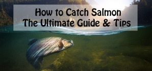 How to Catch Salmon: The Ultimate Guide & Tips